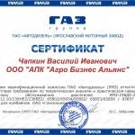 Чапкин_ЯМЗ_800