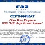 Юдин_ЯМЗ_800
