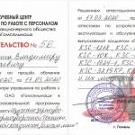 Лисица_Гомсельмаш_600